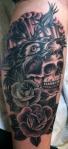 matthowse_wolf_skull