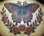 zach-nelligan-butterfly back 4x6